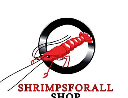[BON PLAN] Réduction chez Shrimpforall