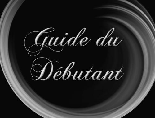 Guide du débutant