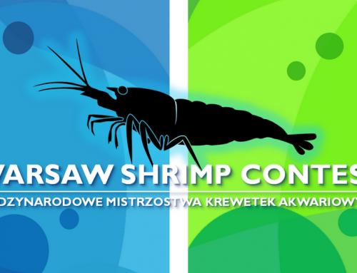 Shrimp Contest de Varsovie  du 19 au 20 mai 2017