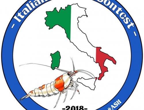 ITALIAN SHRIMP CONTEST du 4 au 6 mai 2018